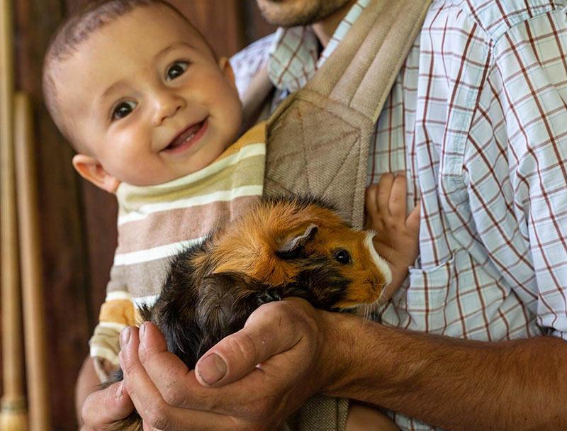 Tiere, Natur und Lebensfreude
